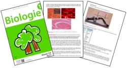 OER_Lehrbuch_Biologie